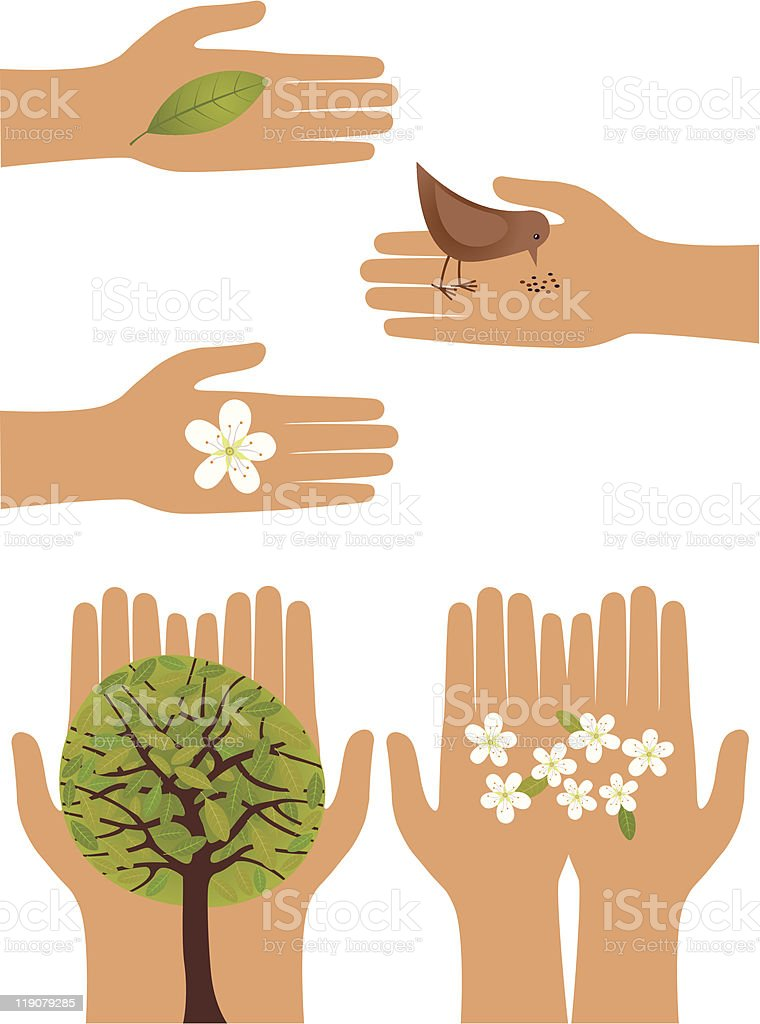 Nature in human hands royalty-free stock vector art