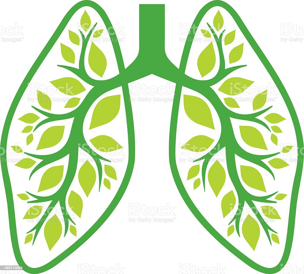 Nature lungs vector art illustration
