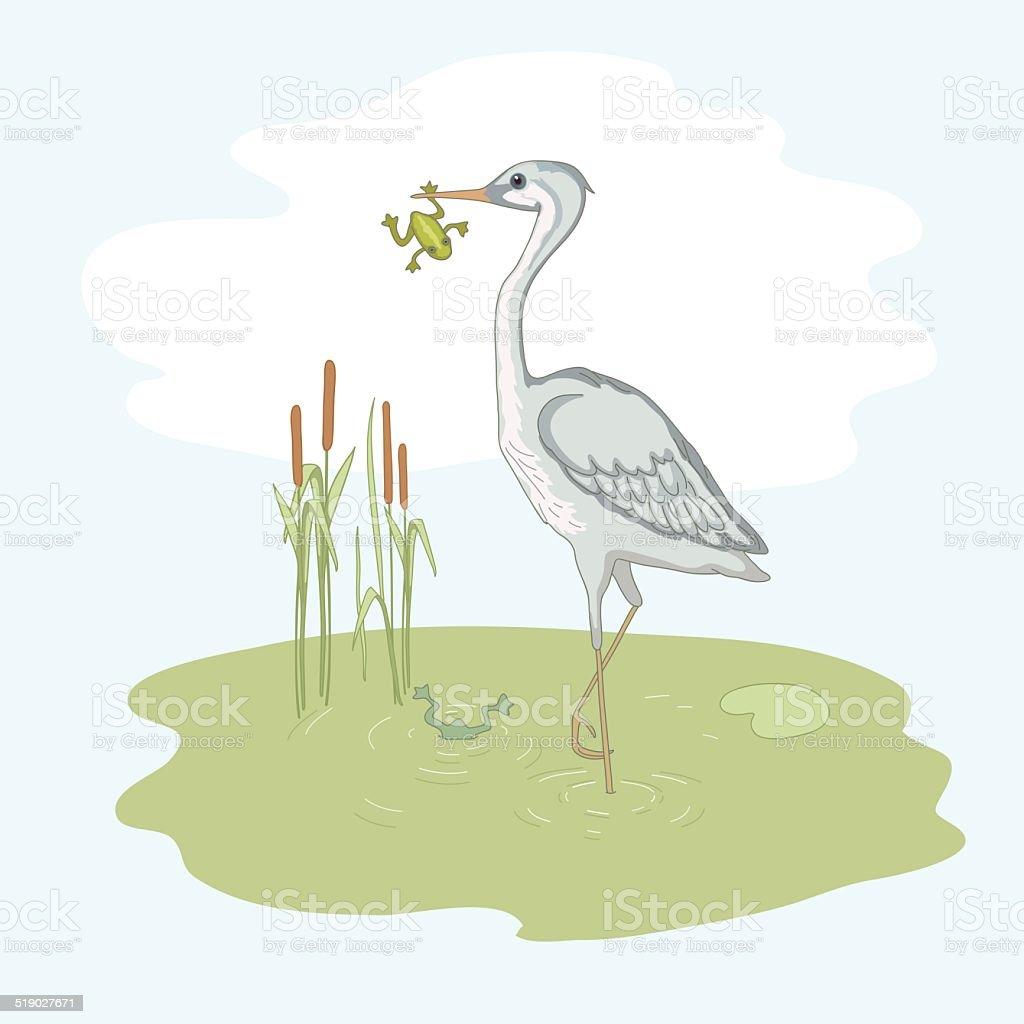 Nature on the bog vector art illustration