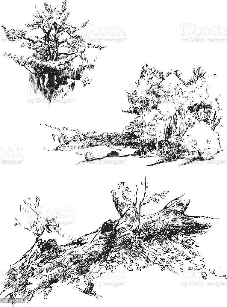 Nature Sketches vector art illustration