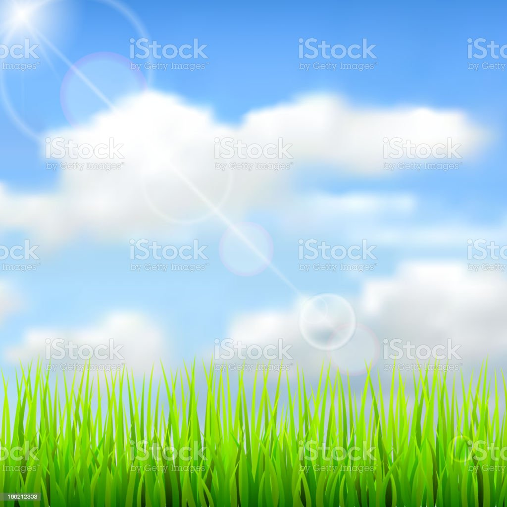 Nature spring background with the sky, clouds and grass. royalty-free stock vector art