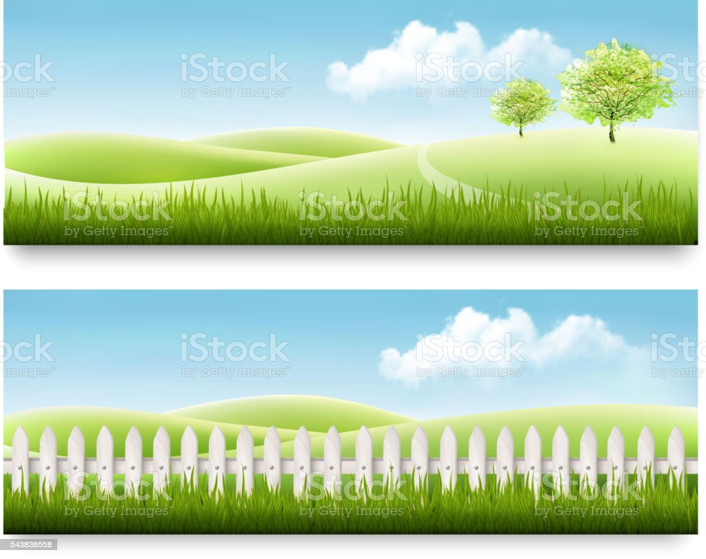 Nature summer banners with green grass and blue sky. Vector vector art illustration