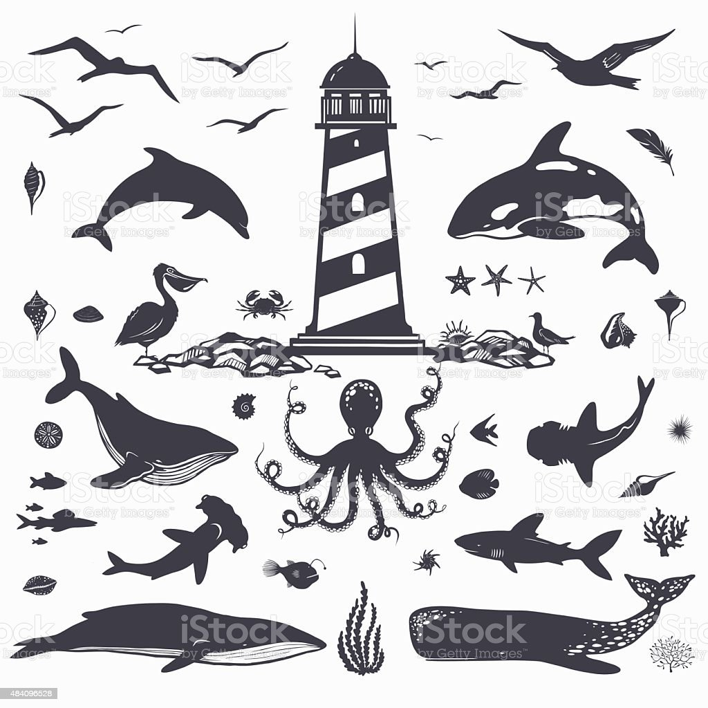 nautical collection: whales, dolphins, seashells, fish vector art illustration