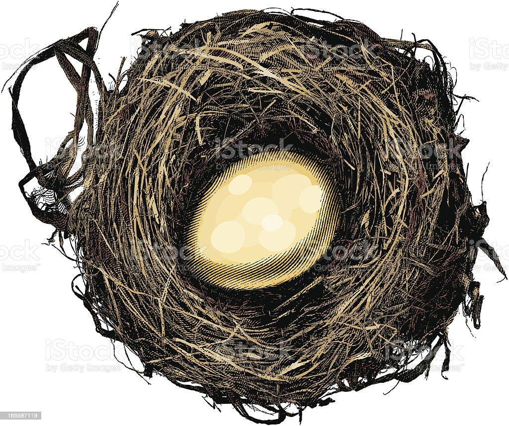 Nest Egg vector art illustration