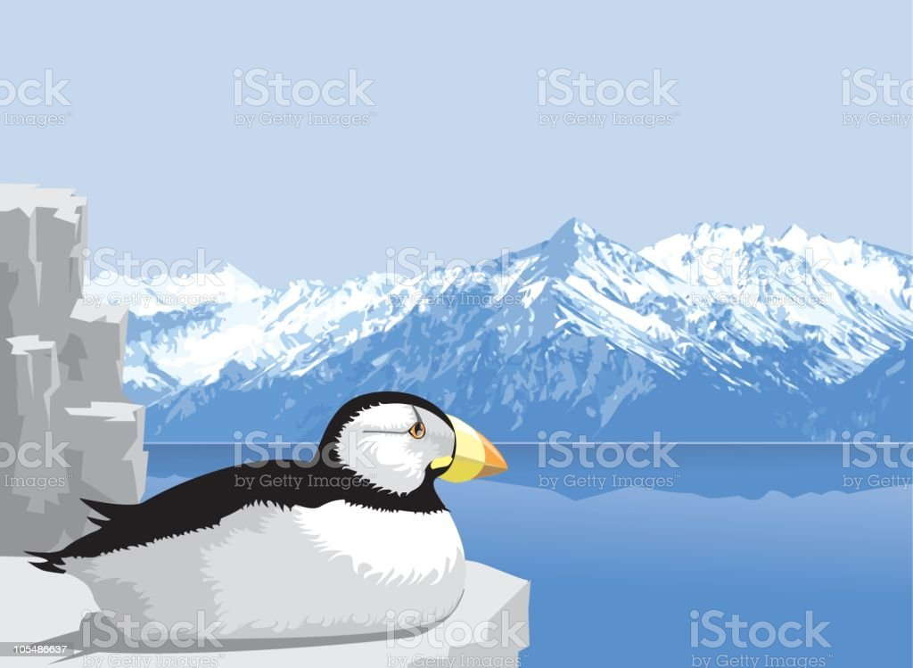 Nesting Puffin (vector) royalty-free stock vector art