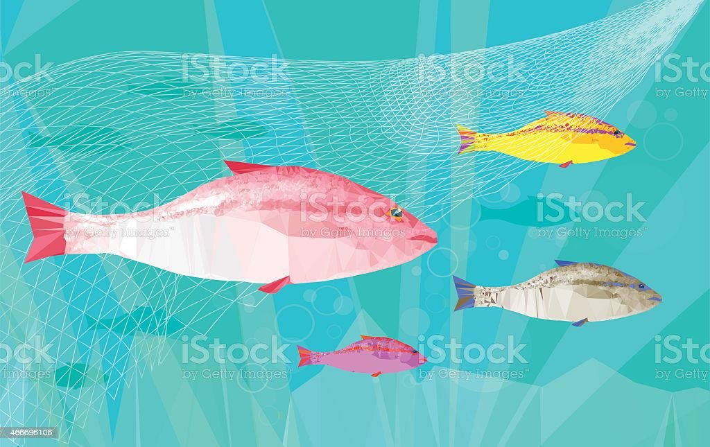 net fishing vector art illustration