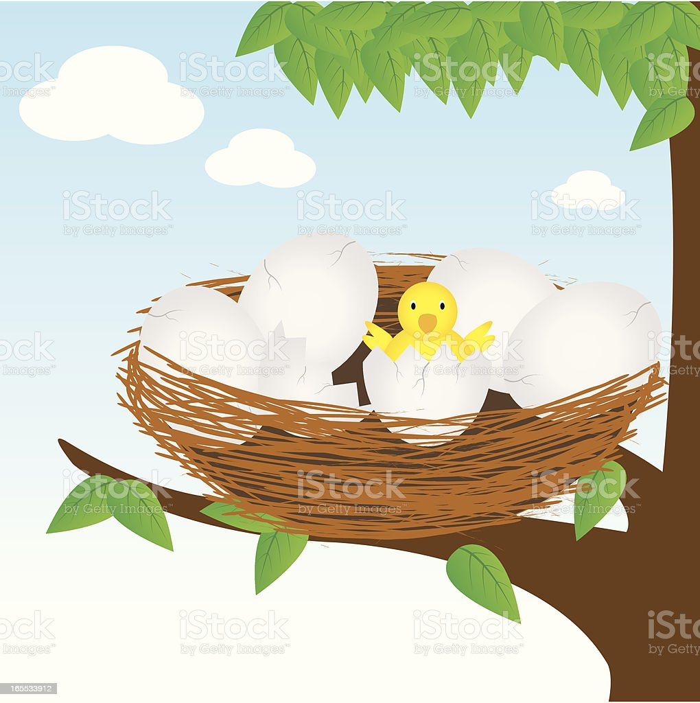 New born (Bird) royalty-free stock vector art
