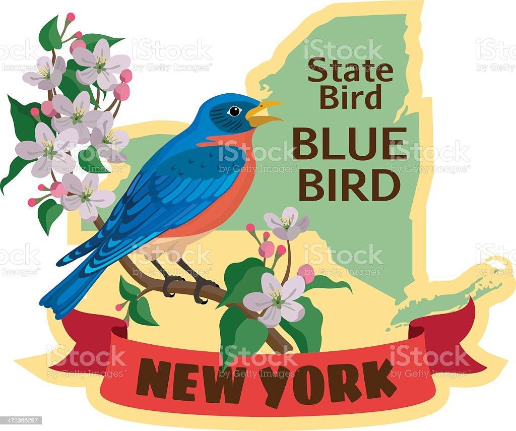 New York State bird vector art illustration