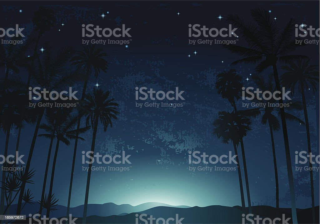 Night palms vector art illustration