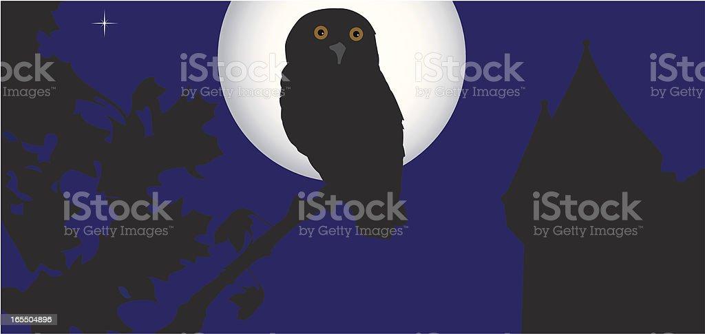 Night Scene vector art illustration