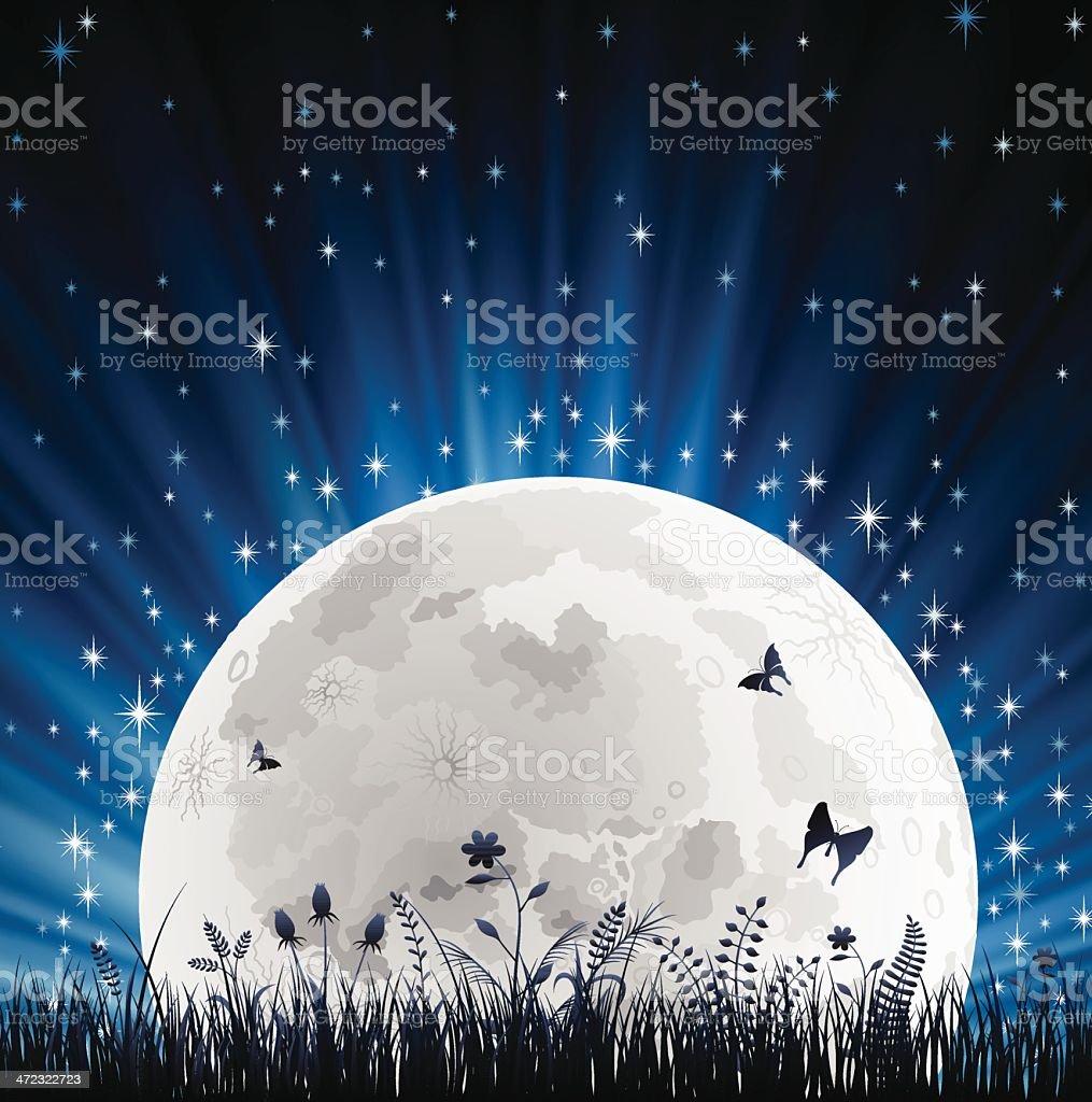 Night with Full Moon and Grass Horizon vector art illustration
