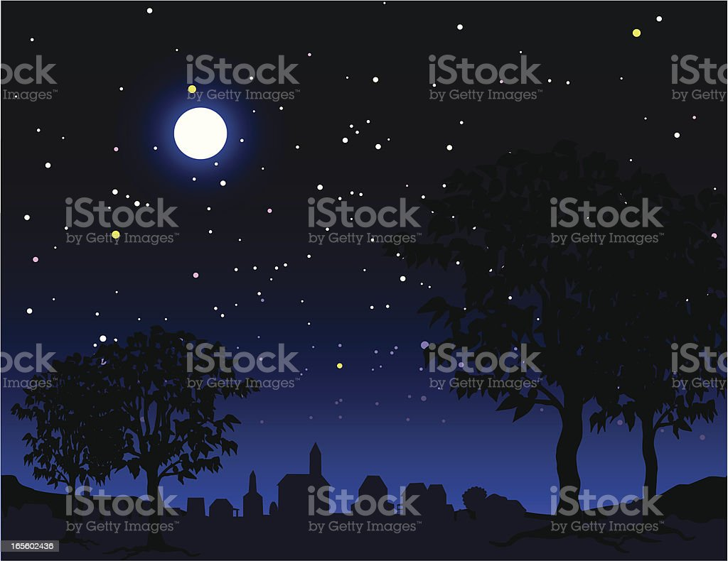 nightime scene vector art illustration