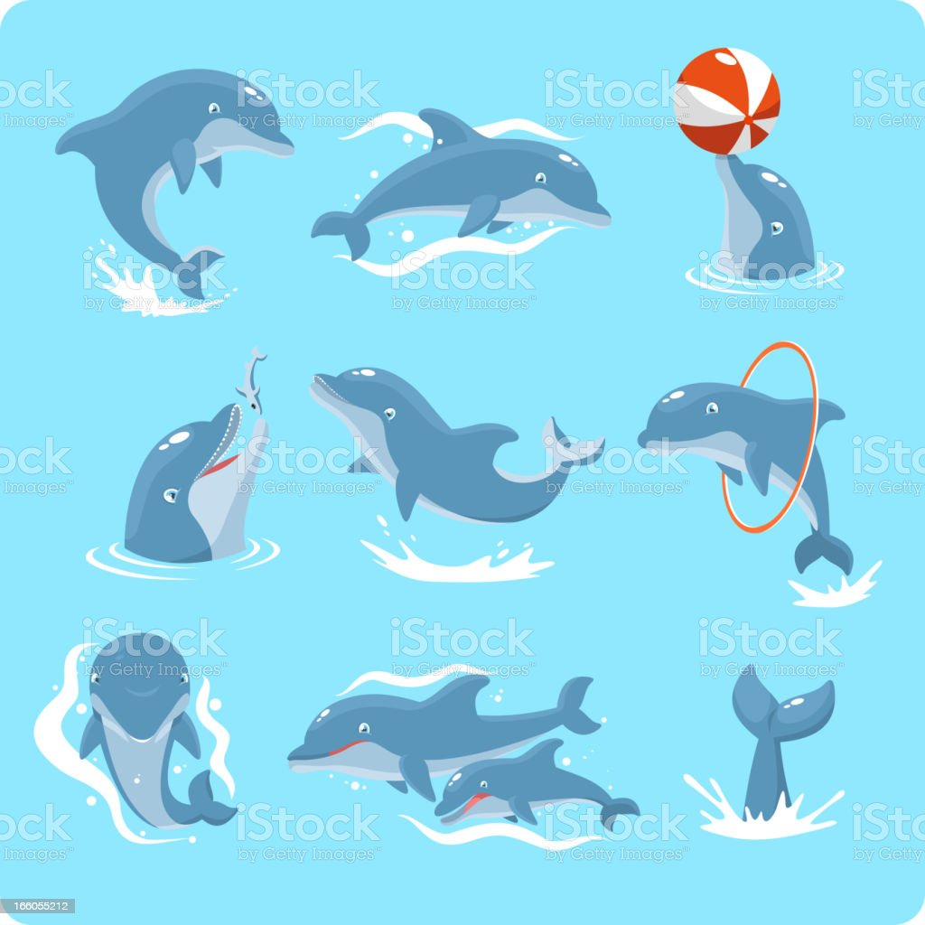 Nine Dolphin set collection playing with ball and ring vector art illustration