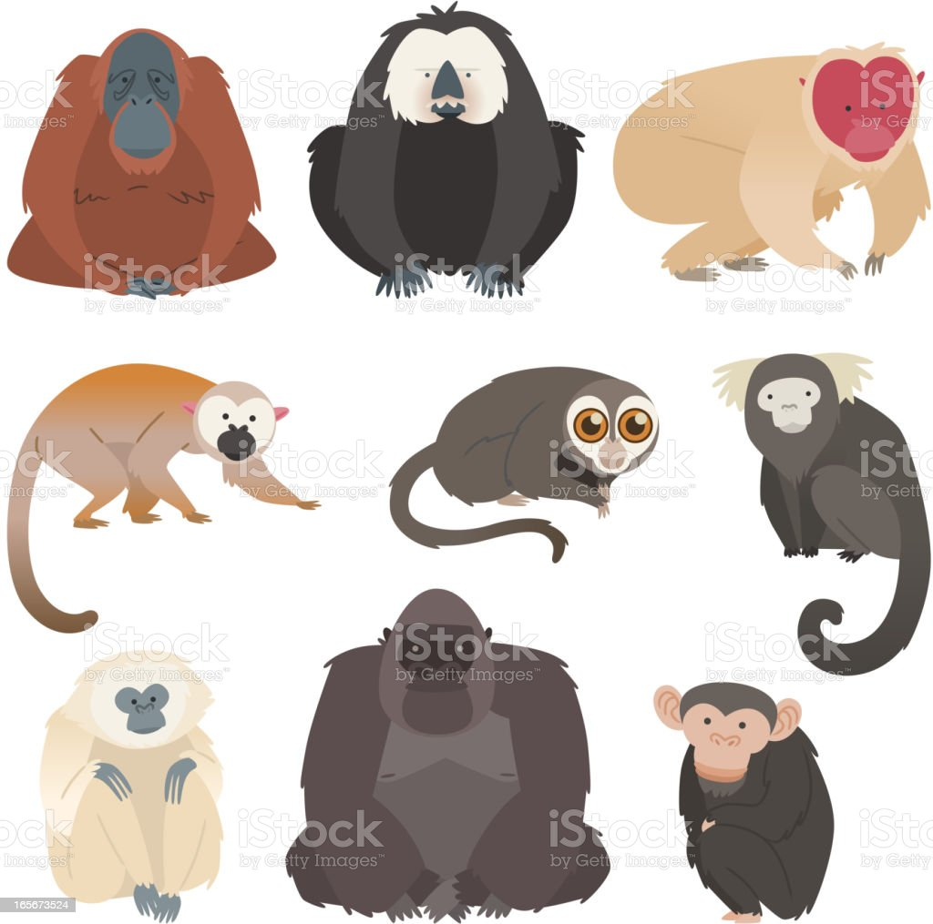 Nine monkey ape collection vector art illustration