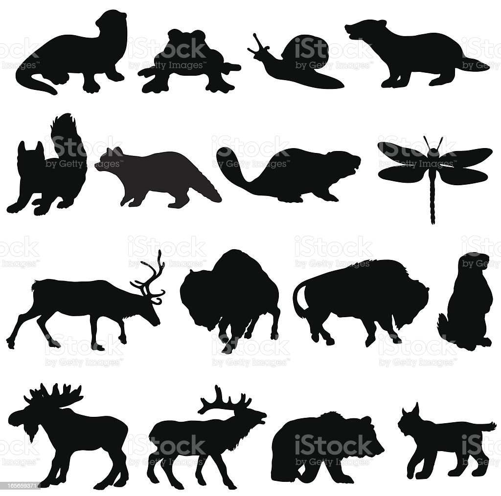 North American animals silhouette collection vector art illustration