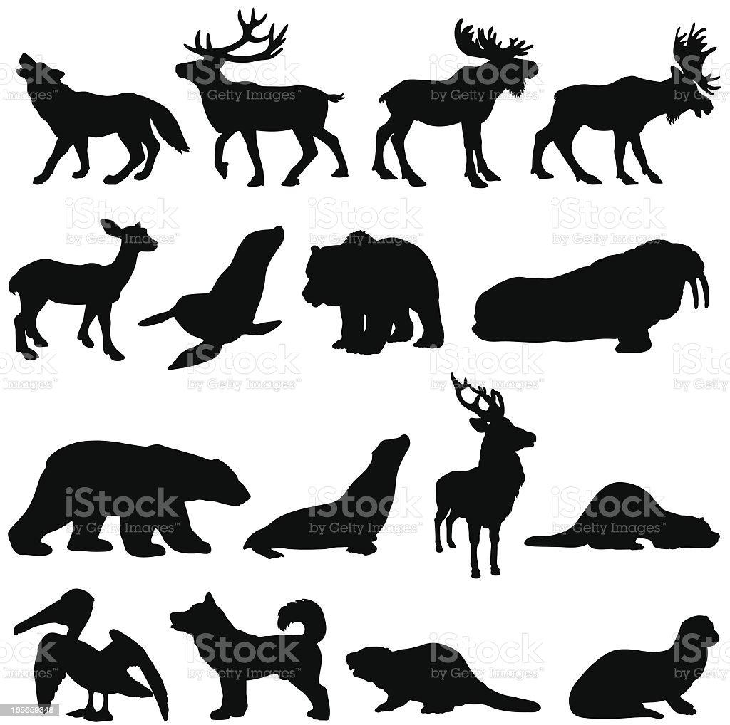North American animals silhouette set 2 vector art illustration