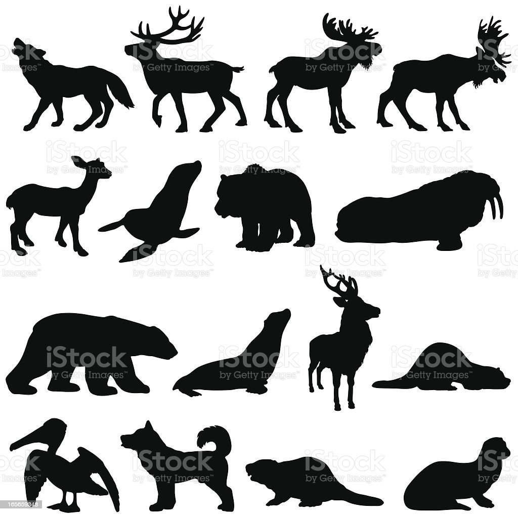 North American animals silhouette set 2 vector art illustration