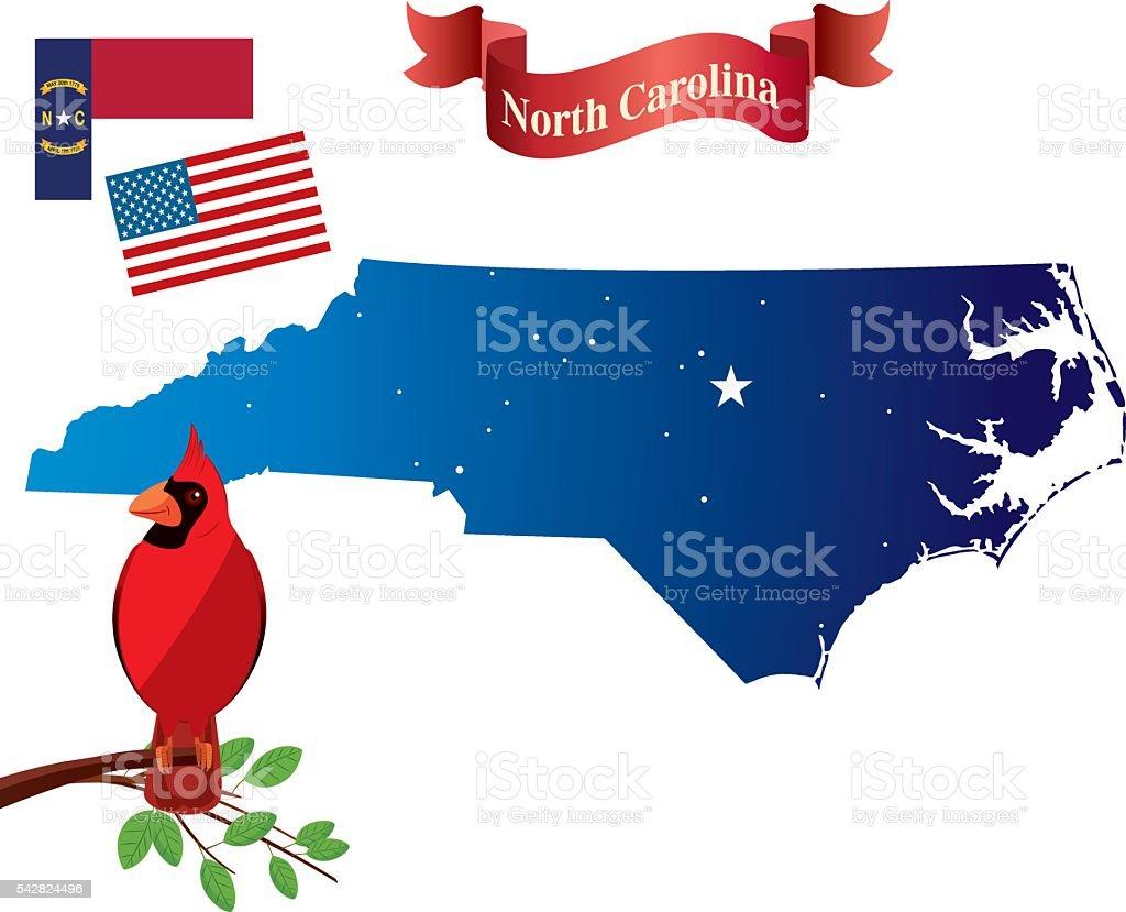 North carolina and Cardinal birds vector art illustration