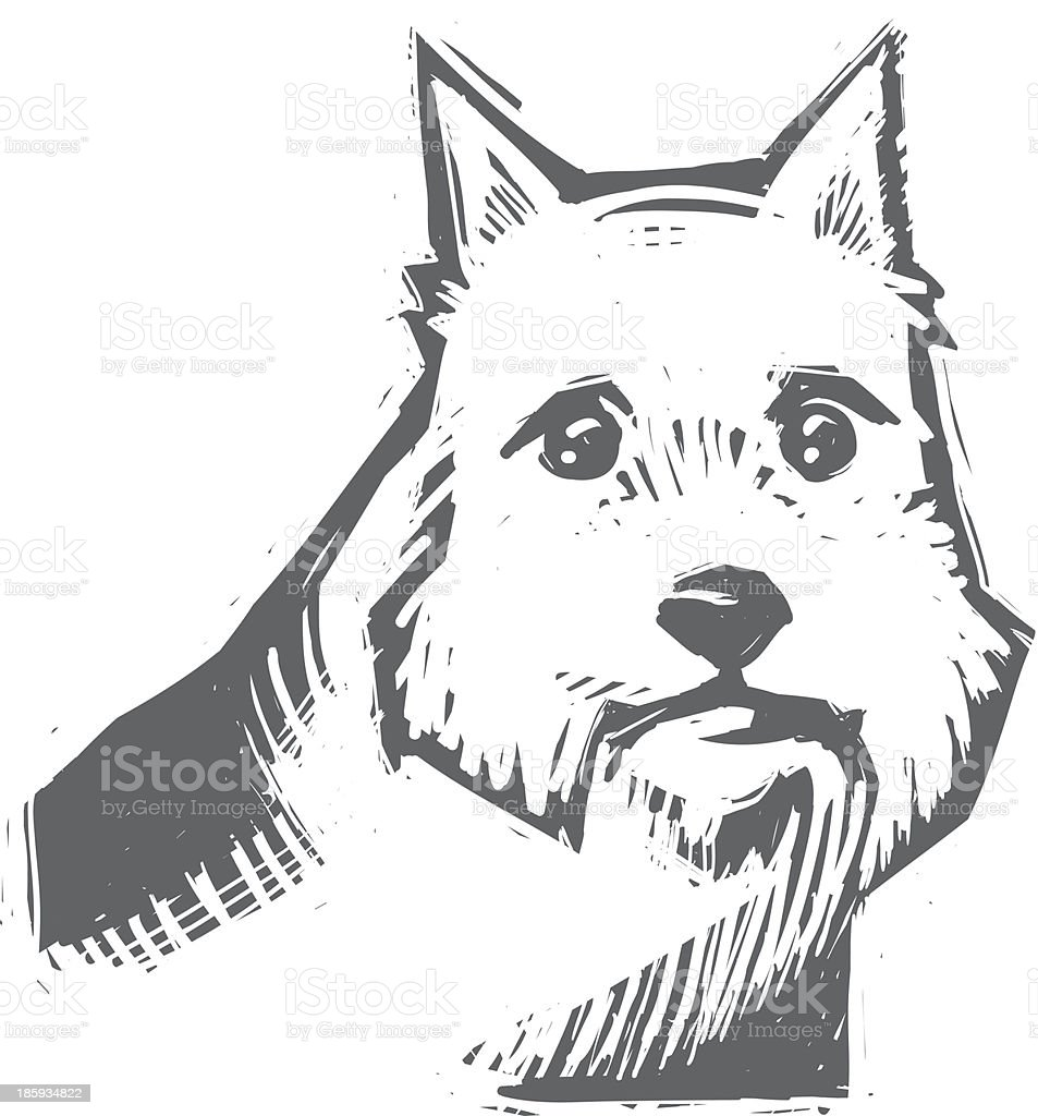 Norwich Terrier vector art illustration