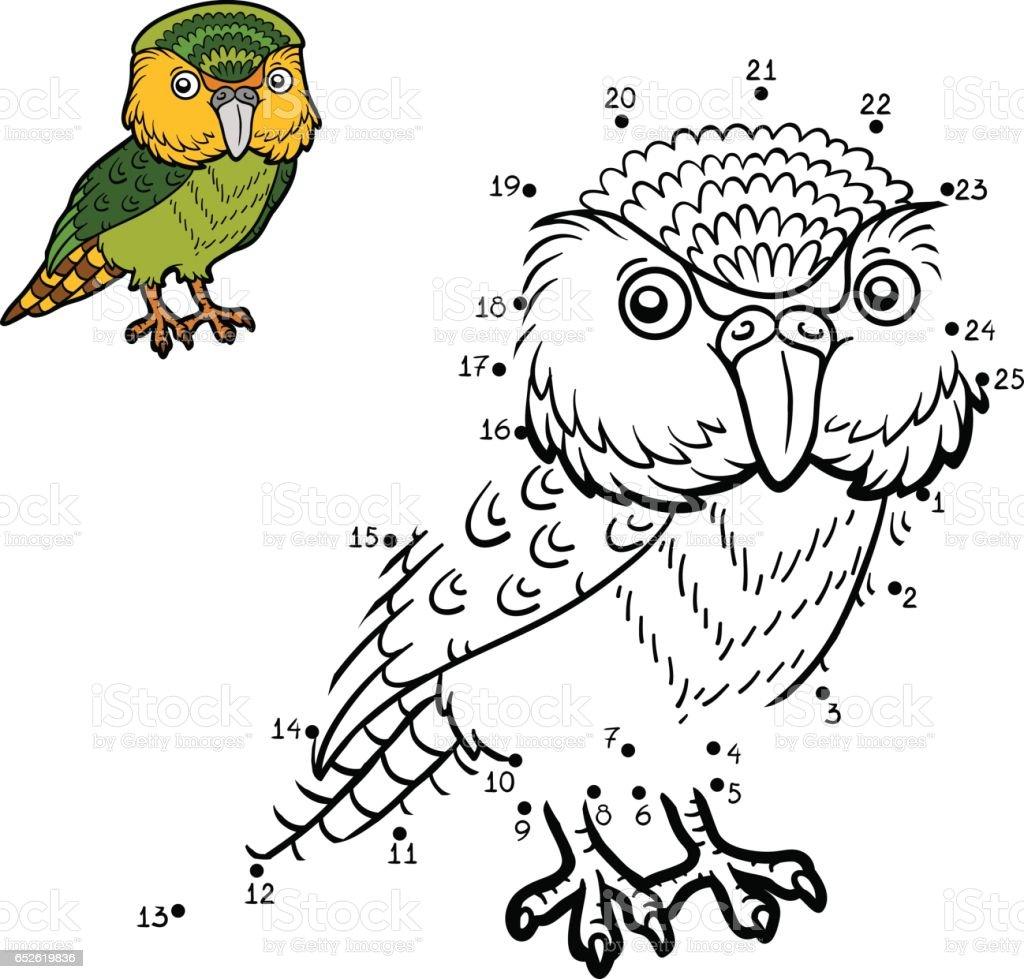 Numbers game, Kakapo vector art illustration