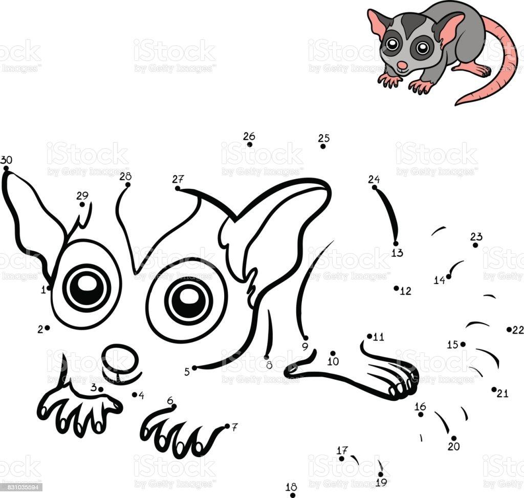 Numbers game, Possum vector art illustration