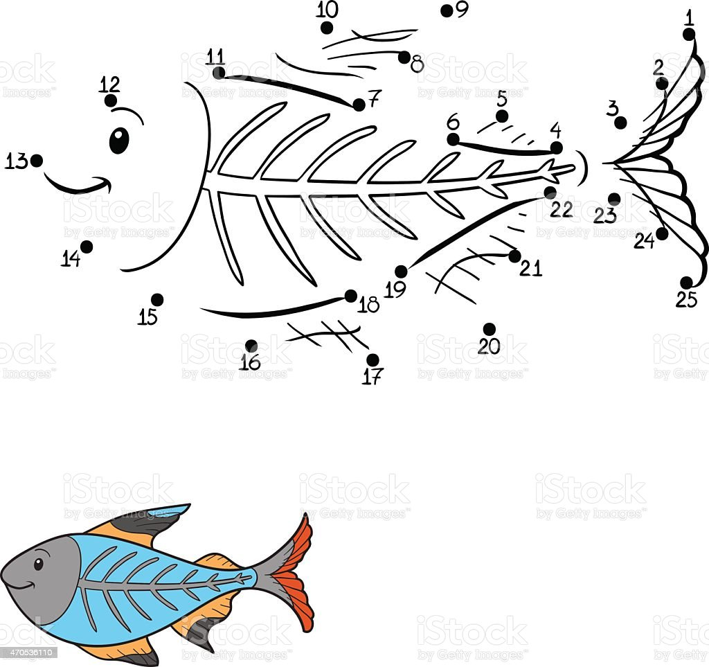 Xray Fish Clip Art Vector Images Illustrations iStock