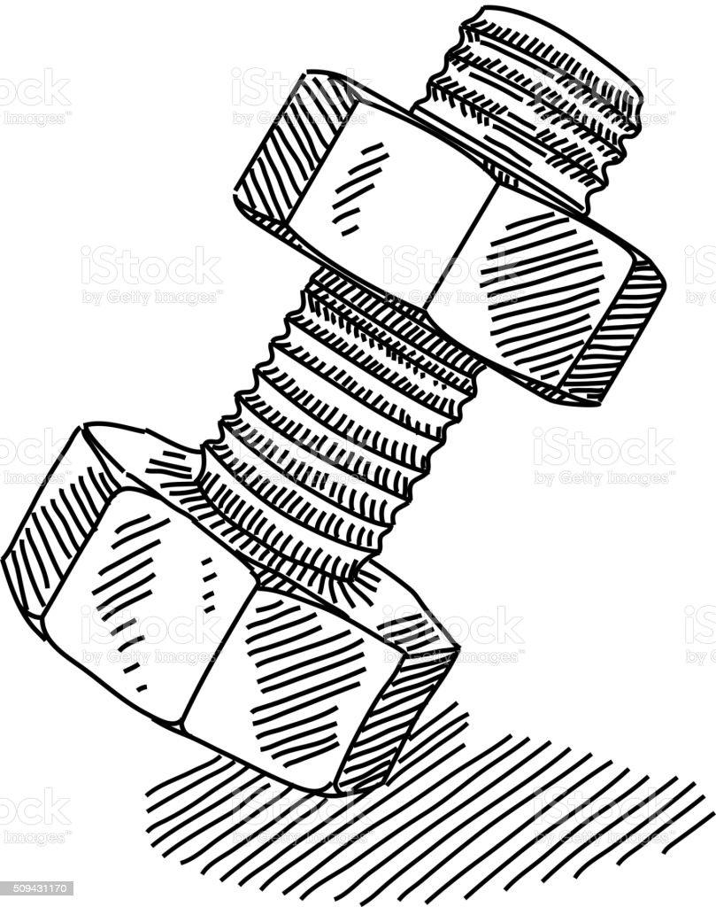 Nut and bolt Drawing vector art illustration
