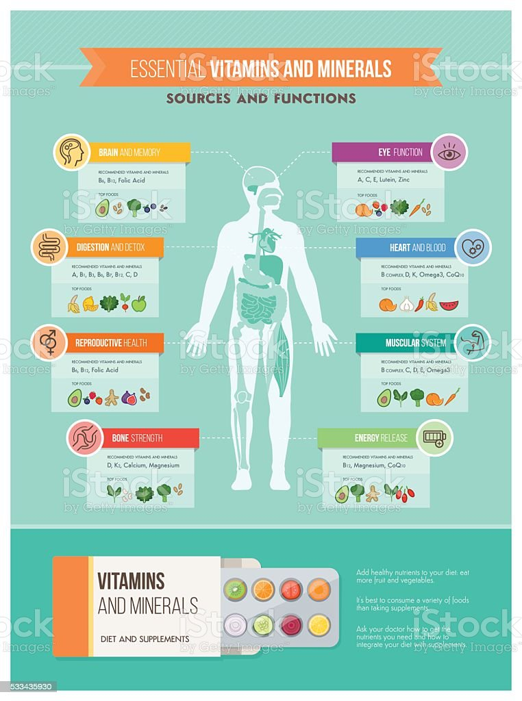 Nutrition and health vector art illustration