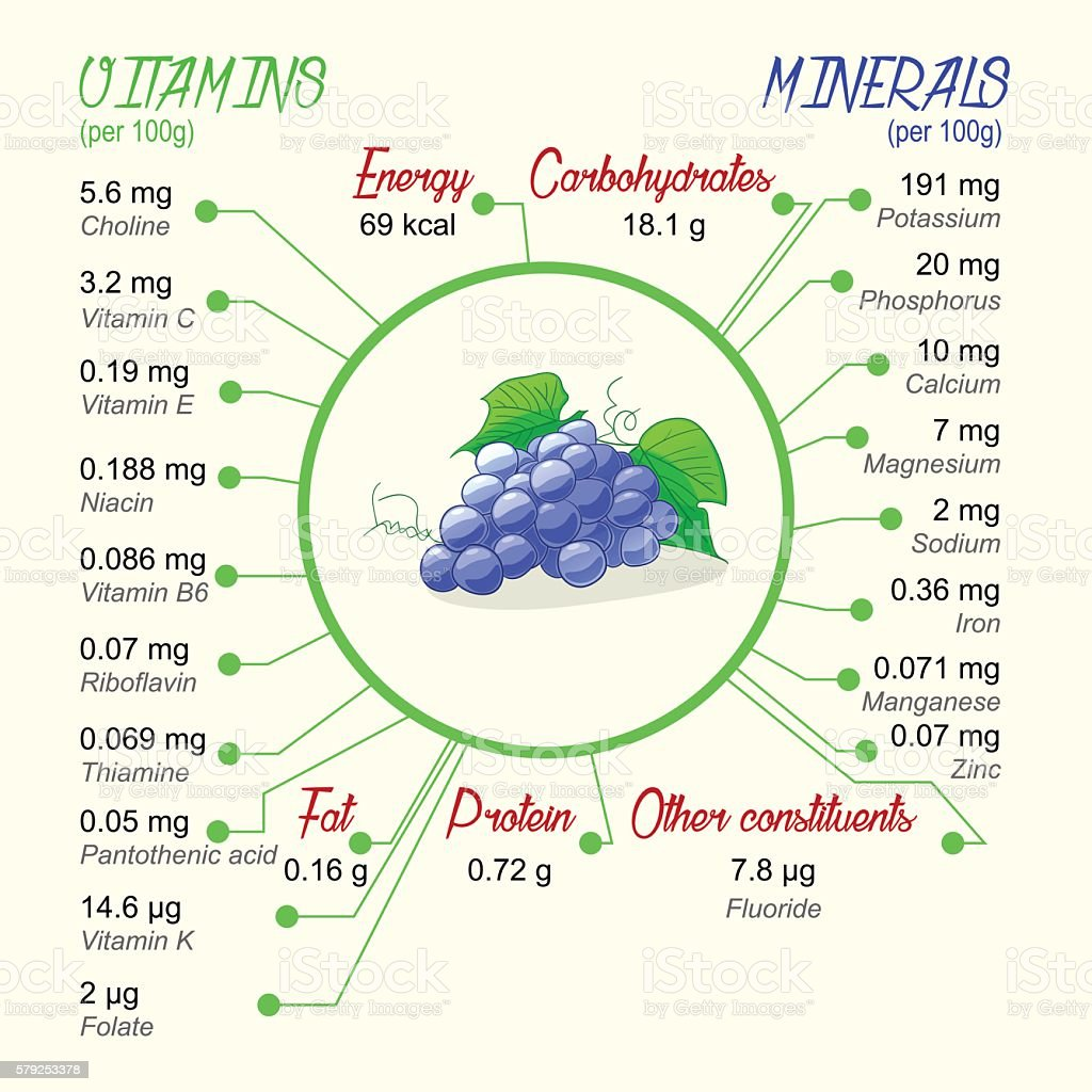 Nutritional value of grapes vector art illustration