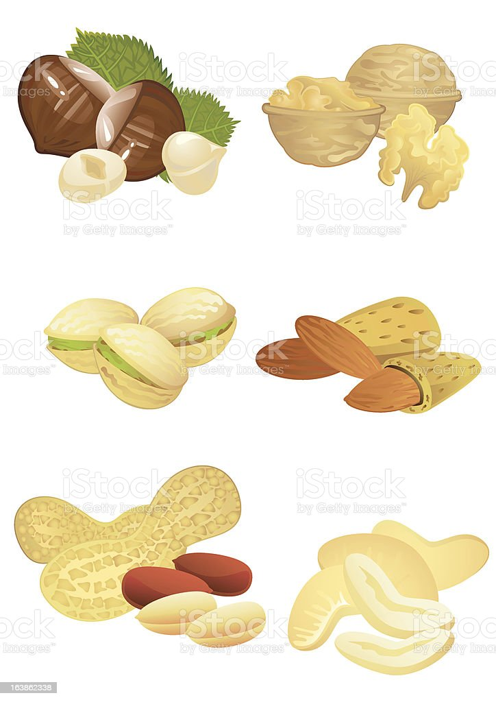 Nuts collection royalty-free stock vector art