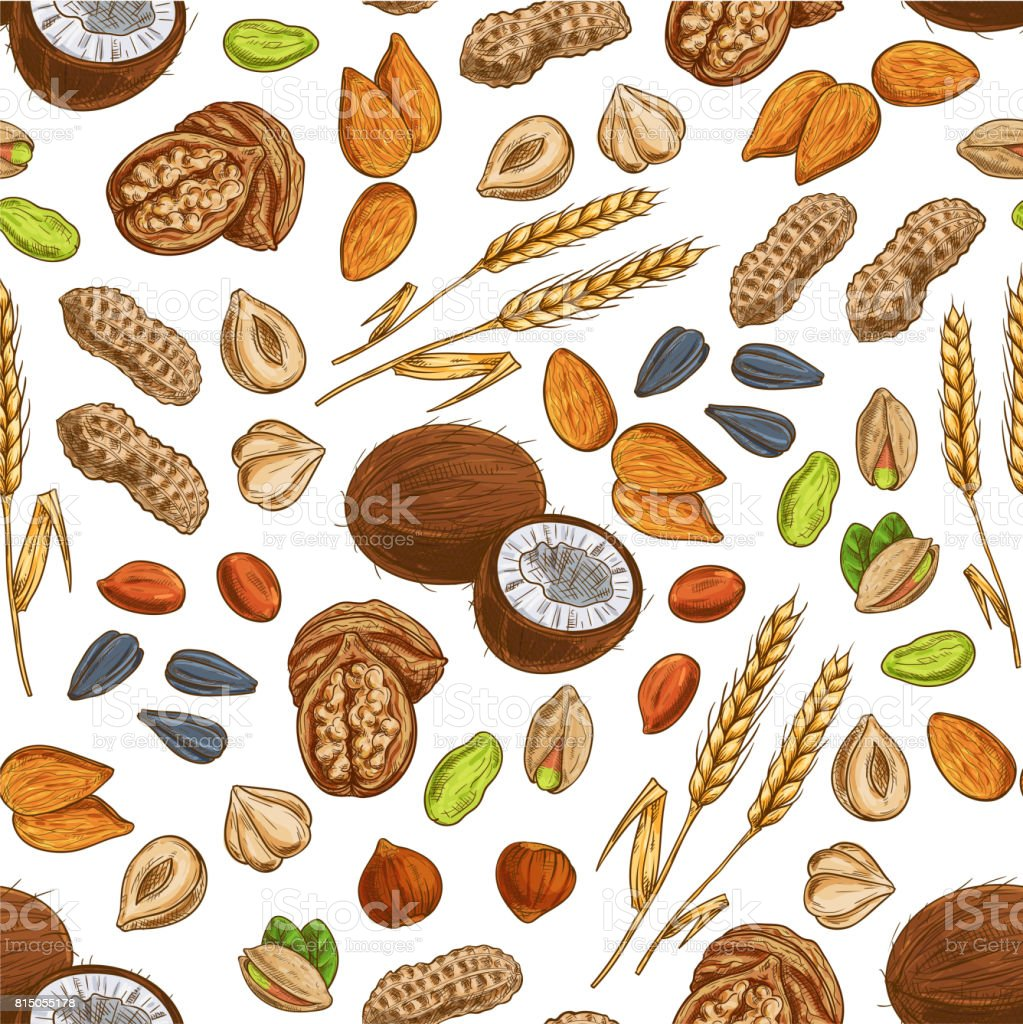 Nuts, grains, seeds seamless pattern vector art illustration