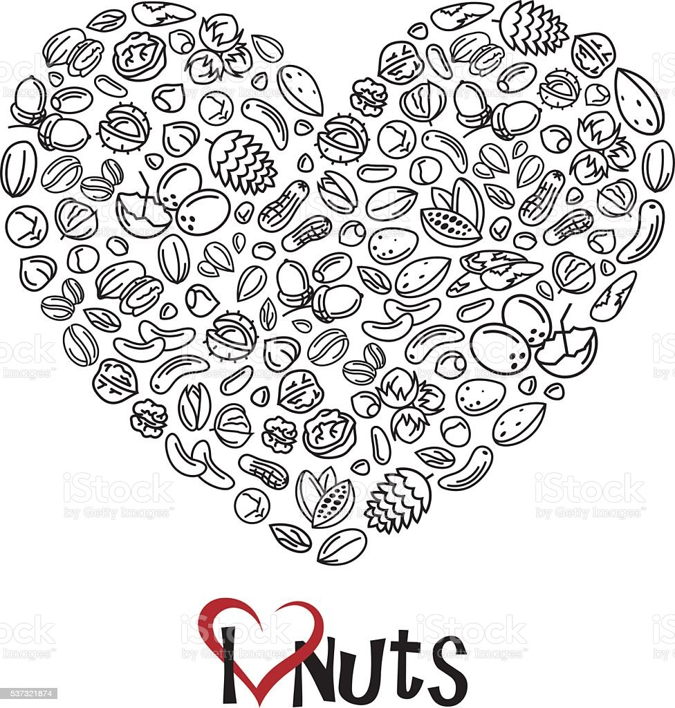 nuts icon as heart vector art illustration