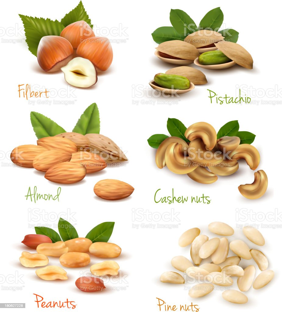 Nuts Icon Set royalty-free stock vector art