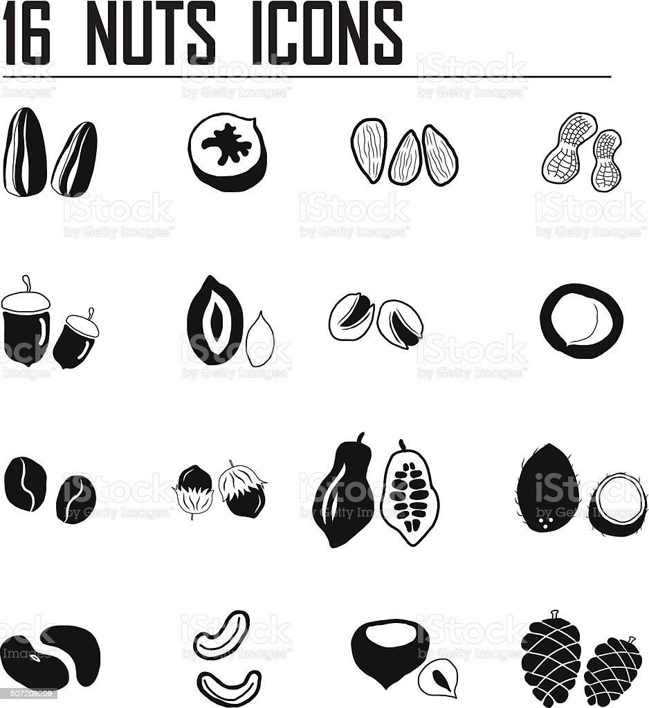 16 Nuts icon set vector art illustration