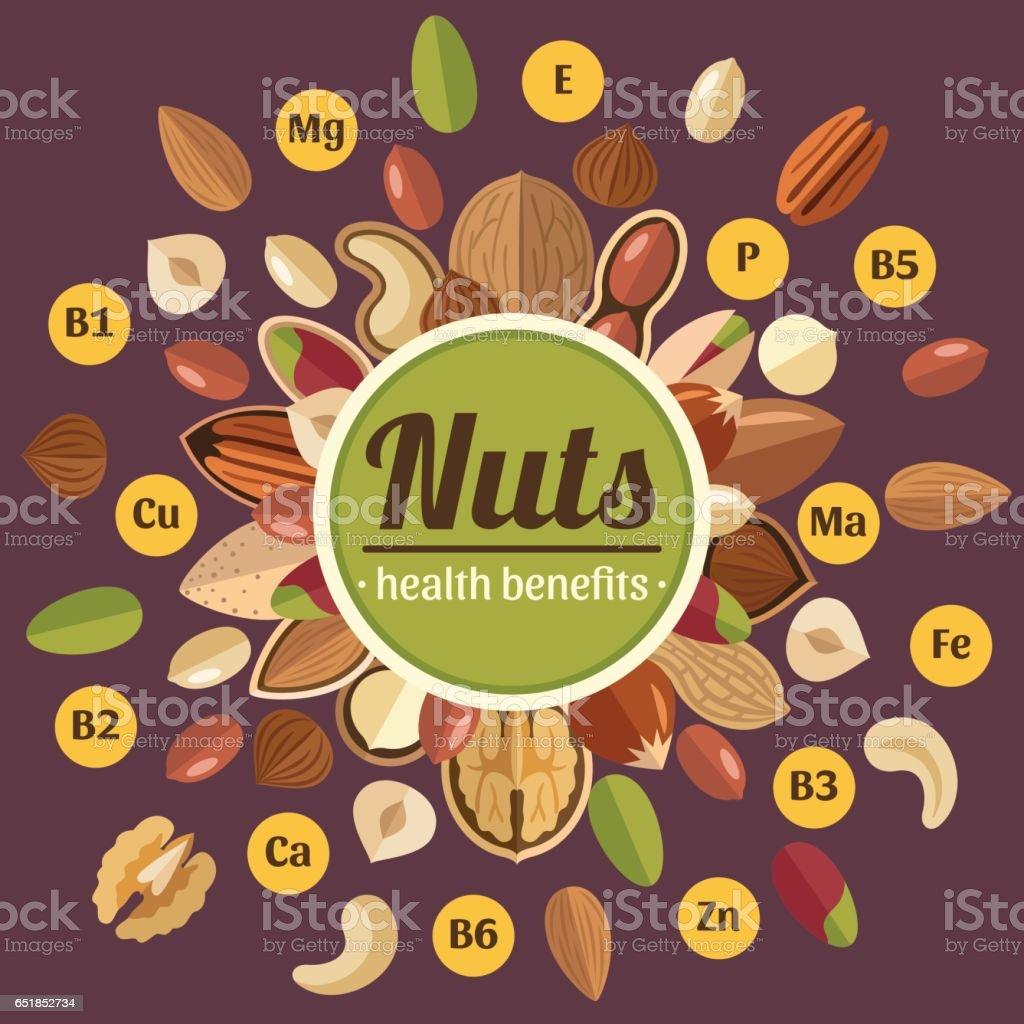 Nuts poster vector art illustration