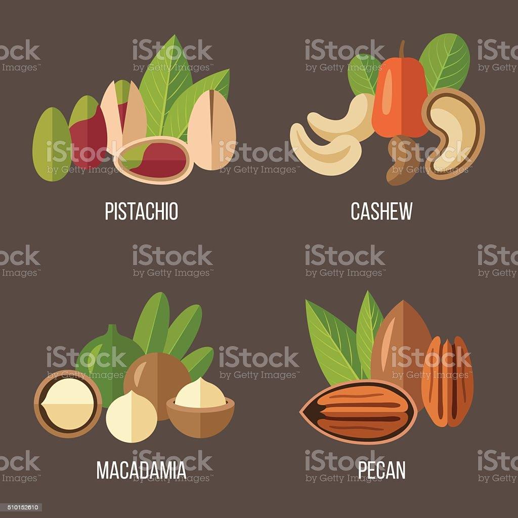 Nuts set 2 vector art illustration