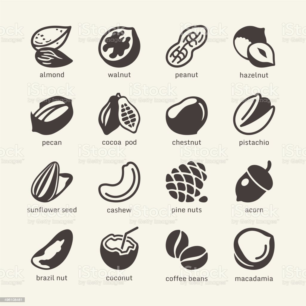Nuts - web icons set vector art illustration