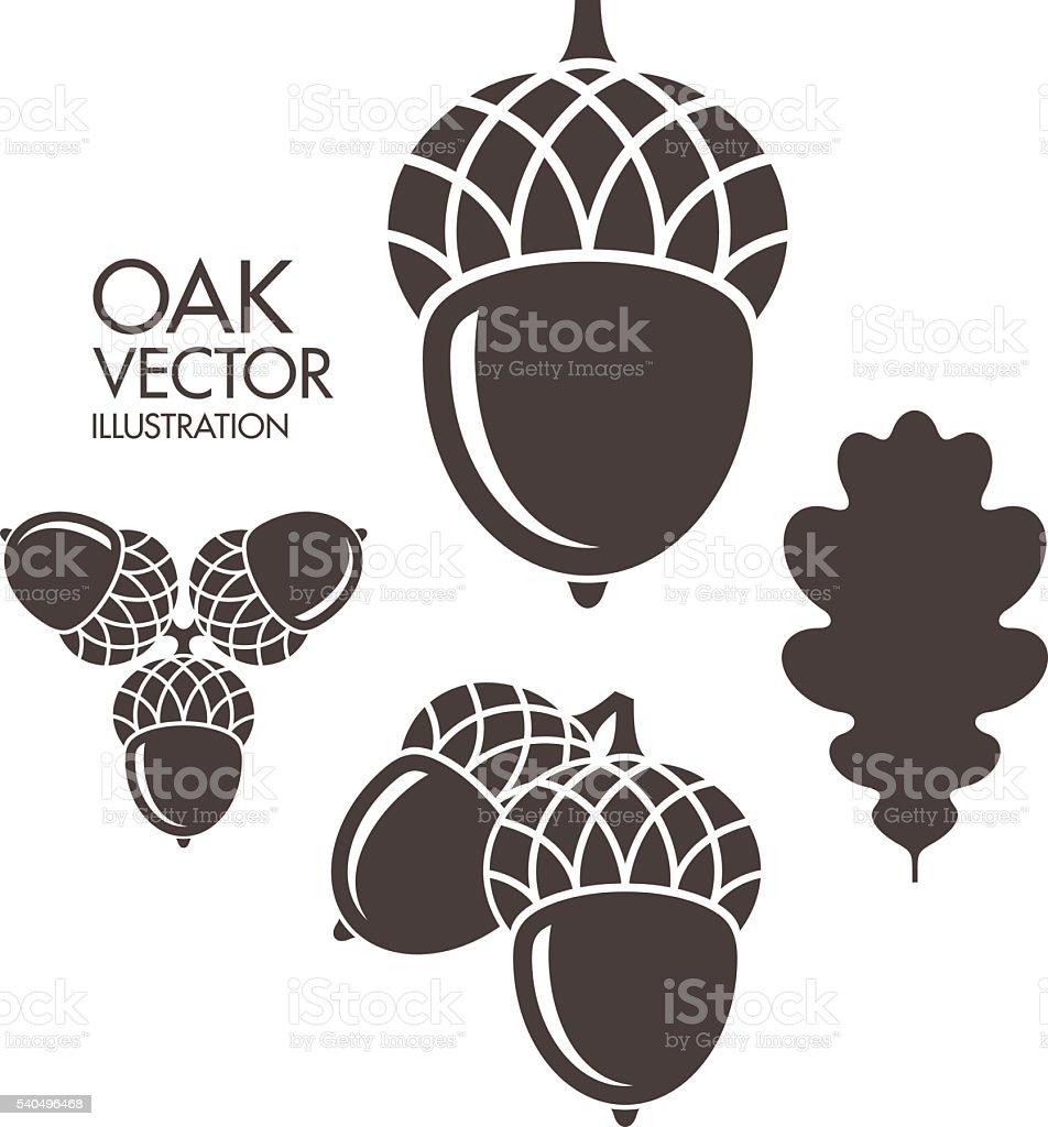 Oak. Acorn. Leaf vector art illustration