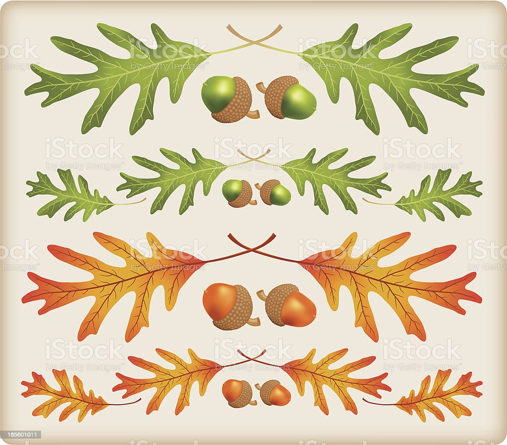 Oak leaves and acorns as border accent royalty-free stock vector art