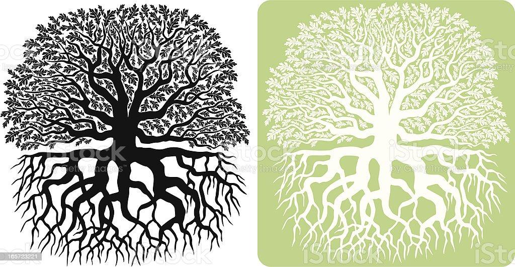Oak Tree Silhouette vector art illustration