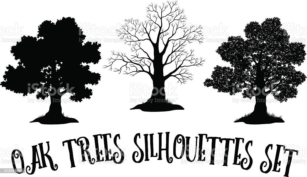Oak Trees Black Silhouettes vector art illustration