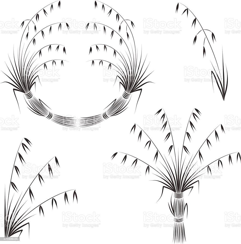 oat royalty-free stock vector art