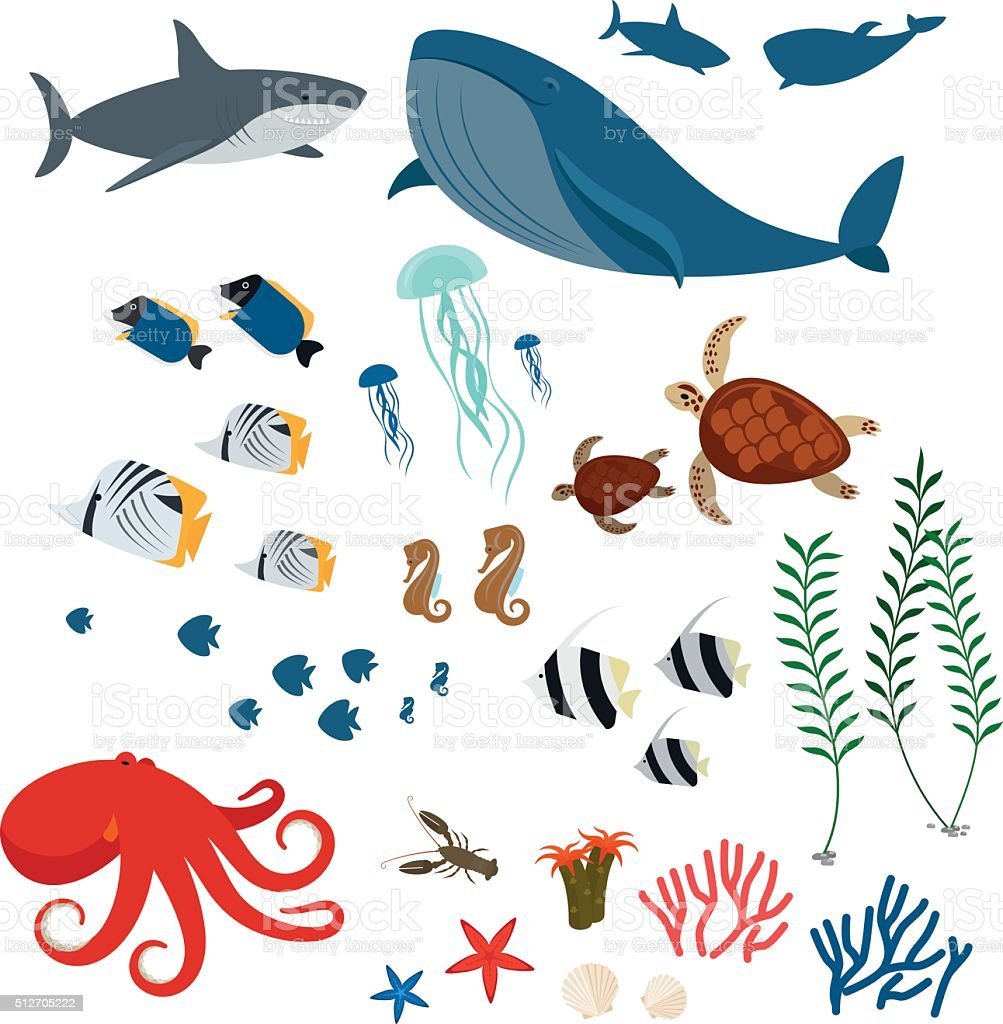 Ocean animals and fishes vector art illustration