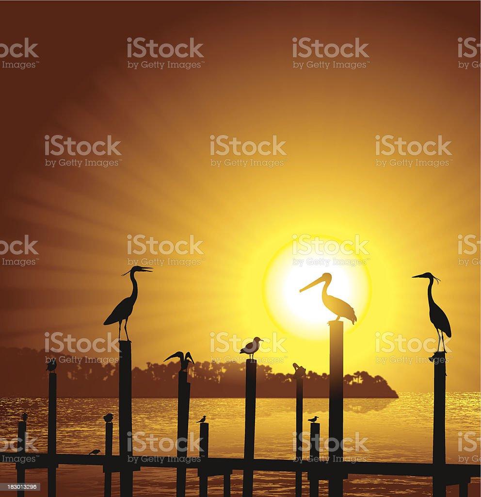 Ocean Birds Pier Sun Background - Pelican, Seagull, Crane vector art illustration