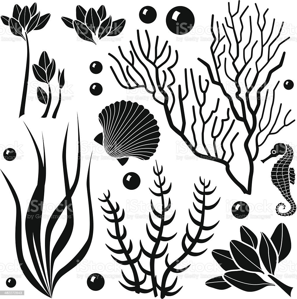 Plant top view vector in group download free vector art stock - Ocean Plants Royalty Free Stock Vector Art