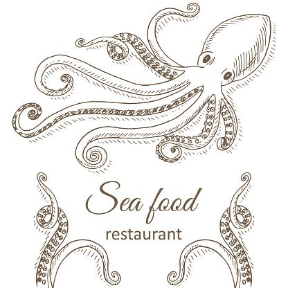 Squid Clip Art, Vector Images & Illustrations - iStock