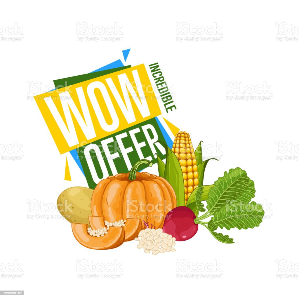 WOW offer discount poster with fresh vegetable vector art illustration