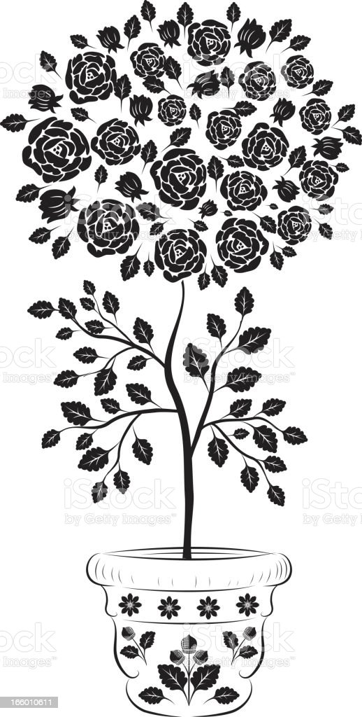 Old Fashioned Black Rose Tree Floral Element royalty-free stock vector art