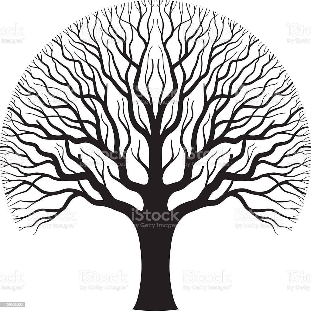 Old oak tree illustration. vector art illustration