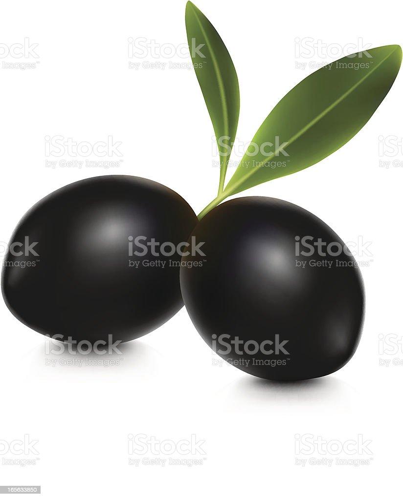 Olive Black vector art illustration